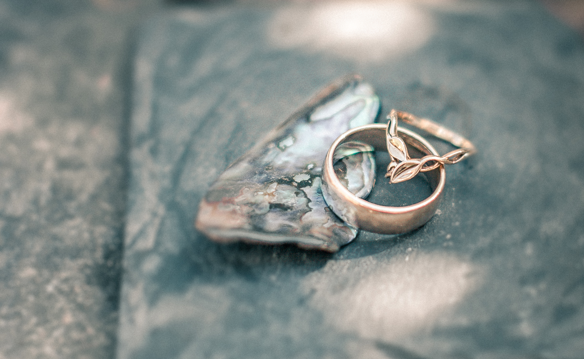 Wedding rings by Hanne Brooks Photography