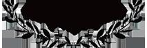 Hanne Brooks Photography Logo